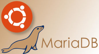 Instalar MariaDB en Ubuntu 18.04